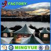 Dosel de carpa Royal Venta en Guangzhou con PVC transparente