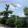 25W Integrative Solar LED Street Light, Solar Lamp con Camera, Solar Panel, Palo, Sensor
