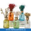 Bottiglia di vetro con il vaso costolato del germoglio di fiore di disegno con la corda della iuta