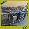 최고 질 신선한 채소 거품 청소 기계