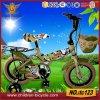 Neue Art MTB China Pushbike scherzt Fahrrad Tc123