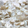 13m m Freshwater Keshi Pearl Strands Wholesale, Baroque Pearls, Highquality, E190003