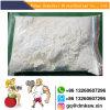 Senile Amnesie Huperzia Serrata Auszug CAS 120786-18-7 Huperzine ein Puder