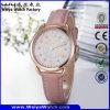 Quarz-Dame-Armbanduhr der Form-wasserdichte OEM/ODM (Wy-095C)