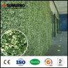 [سونوينغ] خاصّ بلاستيكيّة اصطناعيّة أبيض ورقة جدار سياج لأنّ حديقة