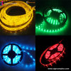 China IP20/IP65 LED SMD5050 Multi Color tira de luces con CE RoHS