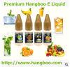 Envío libre E Liquid/E-Juice/E-Liquid para la nicotina Vaping