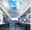 La Chine offre 600*600mm /1200*600mm Bleu Ciel pour éclairage du panneau Home/ /décoration de bureau