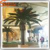 Palmeira artificial falsificada plástica imitada elevada da data