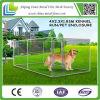 犬の犬小屋を囲うチェーン・リンクの金網