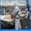 Pig Slaughter House Equipment and Meat Processing Line