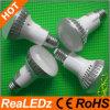 Ampoules de forte intensité puissantes de 12W LED