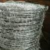 Гальванизированная колючая проволока для Fence Wire
