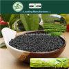 Il carbonio di Kingeta ha basato il fertilizzante composto NPK 18-18-6 per tè