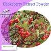 Порошок выдержки Chokeberry 100% естественный (антоцианин 5%, 10%, 15%, 20%, 25%)