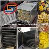 Het Dehydratatietoestel van het Voedsel van het Vlees van het Fruit van het roestvrij staal met 10 Dienbladen