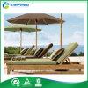 Muebles del jardín de la teca, muebles al aire libre - ocioso (FY-009CB)