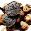 L'aglio nero con salute cardiovascolare