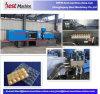 Garantía de calidad de la inyección plástica del cartón de huevos que hace la máquina