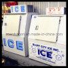 Merchandiser van de Diepvriezer van Hielo van het ijs Bak
