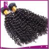 De kroezige Kleur van het Weefsel van het Haar van de Krul Braziliaanse Bruine en Zwarte
