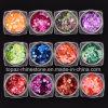 12boxes/Set de kleurrijke Lovertjes van het Ontwerp van de Spijker van de Decoratie van de Kunst van de Spijker van Kerstmis van de Vlokken van de Laser Zilveren Paillettes hart-Gevormde schitteren (ND05)