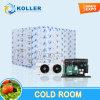 3 Toneladas Sala Fria (pé no freezer) para armazenamento de peixe e carne