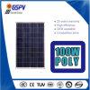 Haute performance poly panneau solaire de 100 watts avec le meilleur prix de la fabrication de Chinois