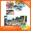 Гигантский смешной напольный парк воды плавательного бассеина пластичный для малышей и взрослых