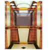 중국에 있는 FUJI Quality Passenger Lift Produced