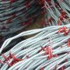Aparelhos eléctricos de arame farpado galvanizado com alta qualidade (TSBW-1)