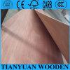 Contre-plaqué commercial du constructeur 12mm de la Chine avec le placage de Bintangor