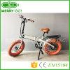 le gros pneu de 36V 350W Ebikes pliant E fait du vélo le mini type bicyclette cachée d'E