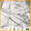 Jade hielo blanco populares baldosas de piedra de mármol para suelos/pared/Encimeras
