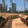 Corredor do Decking do parque e corrimão de madeira compostos da cerca -- Fornecedor de Foshan