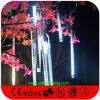 나무 훈장 유성 크리스마스 불빛