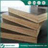 Contre-plaqué Shuttering du faisceau 12mm de Combi de peuplier de bois dur