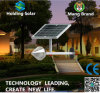 IP65 energiesparendes LED Solarlicht mit niedrigem Preis