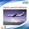 Logistisches Services zu Jakarta/zu Surabaya/zu Ujungpandang Indonesien