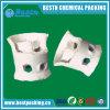 De ceramische Verenigde Vuller van de Ring voor de Kolom van de Distillatie en KoelToren
