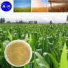 Fertilizante del aminoácido de la fuente de la planta de China