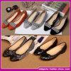 2015の新しいデザインブランドの高品質の平たい箱の靴の女性偶然の歩きやすい靴(E-75)
