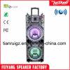 De nouveaux produits à l'extérieur DJ le président de la batterie portable Trolley avec lumière colorée F10-23