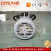 Электрический двигатель одиночной фазы поставщика 2800rpm Китая, 2HP 1.5kw 50Hz