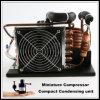 wassergekühltes Gerät des Kondensator-12V mit Minikompressor für Mikro- und bewegliche Kühlanlage