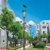 Nuevo estilo de las luces de calle Solar para jardín