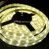 LED 가동 가능한 지구 (JY-LST-E60S35W5-1)