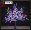 Feux de LED RVB de cerisier