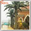 Hot Sale Landscape Artificial Date Palm Plants Tree