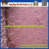 Горячая окунутая гальванизированная ячеистая сеть Anping шестиугольная